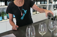 Auckland Wine Tour